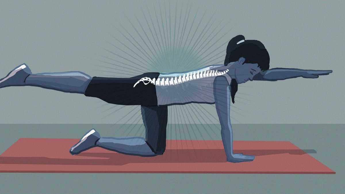 Top 5 động tác đơn giản giảm đau lưng và giãn cơ (1)