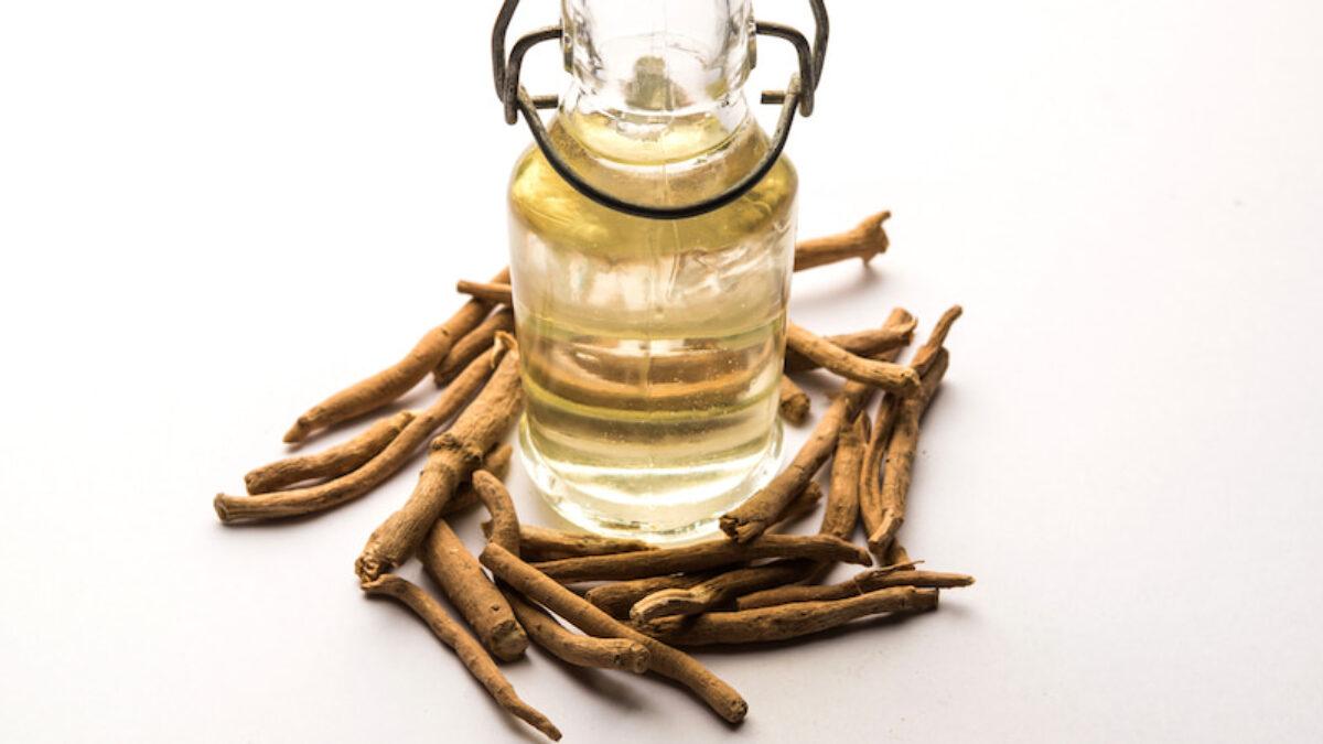 Lợi ích sức khỏe của thảo dược Ashwagandha (1)